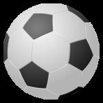 Футбольные мячи ( футбольные щитки , перчатки , гетры)