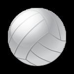 Волейбольные мячи , наколенники